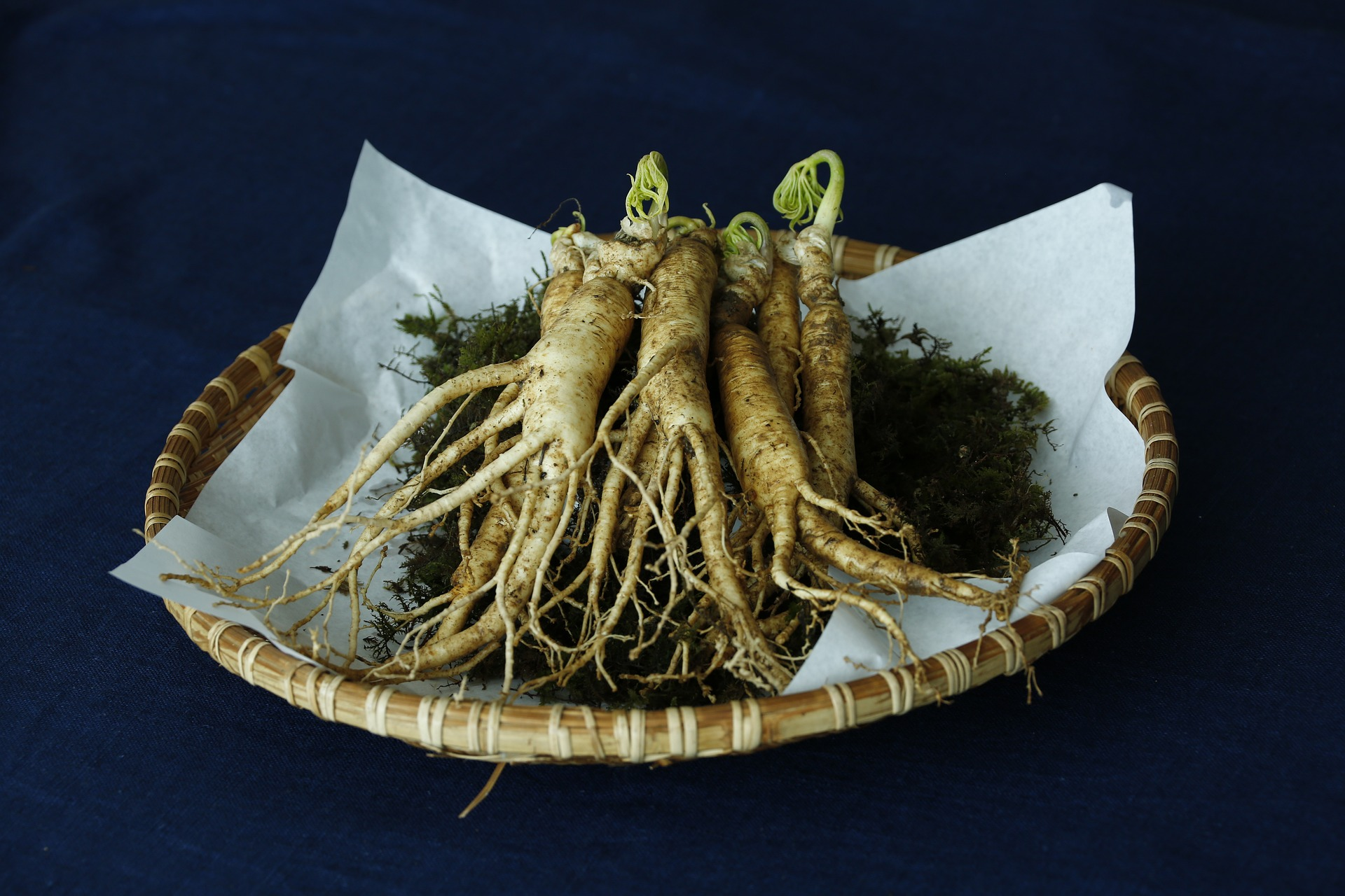 Thinking About Selling Private Label Ginseng